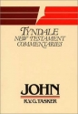 John (Tyndale New Testament Commentaries)