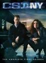 CSI: New York - Season 1