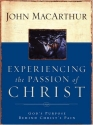Experiencing the Passion of Christ: God's Purpose Behind Christ's Pain