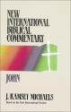 John (New International Biblical Commentary/NIBC 4)