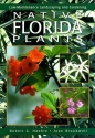 Native Florida Plants: Low-Maintenance Landscaping and Gardening