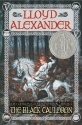 The Black Cauldron (Chronicles of Prydain (Henry Holt and Company))