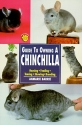 Guide to Owning a Chinchilla