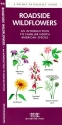 Roadside Wildflowers: An Introduction to Familiar North American Species (North American Nature Guides)