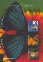 A Pocket Guide to Butterflies & Moths