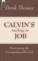 Calvin's Teaching On Job