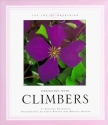 Designing With Climbers (The Joy of Gardening)