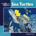Sea Turtles (Our Wild World)