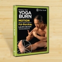 Rodney Yee: Yoga Burn