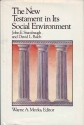 The New Testament in Its Social Environment (Library of Early Christianity)