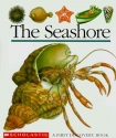 The Seashore (First Discovery Books)