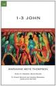 1-3 John (IVP New Testament Commentary)