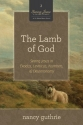 The Lamb of God (A 10-week Bible Study): Seeing Jesus in Exodus, Leviticus, Numbers, and Deuteronomy (Seeing Jesus in the Old Testament)