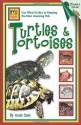 Turtles & Tortoises (Beginning Vivarium Systems)