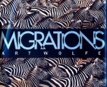 Migrations: Wildlife in Motion (Earthsong Collection)