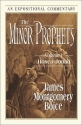 The Minor Prophets: Volume 1: Hosea-Jonah (Expositional Commentary)