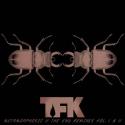Metamorphosiz ll The End Remixes Vol. I & II