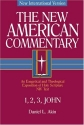 The New American Commentary Volume 38 - 1,2,3 John