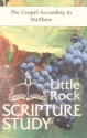 The Gospel According to Matthew: Study Guide (Little Rock Scripture Study)