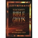 Serendipity Bible for Groups, New Inter...