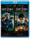 Harry Potter Double Feature: The Deathl...