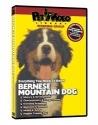 BERNESE MOUNTAIN DOG DVD! + Dog & Puppy...