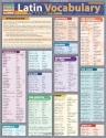 Latin Vocabulary (Quickstudy: Academic)
