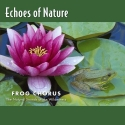 Echoes of Nature: Frog Chorus