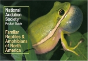 National Audubon Society Pocket Guide to Familiar Reptiles and Amphibians (National Audubon Society Pocket Guides)