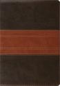 ESV Study Bible (TruTone, Forest/Tan, Trail Design)