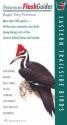 Eastern Trailside Birds (Peterson FlashGuides)