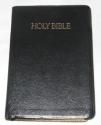 The Holy Bible: Nelson King James Version Giant Print Edition (Giant Print References, Concordance, Words of Jesus in Red, 544)