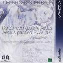Bach: Cantatas BWV 110