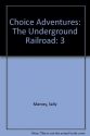 The Underground Railroad (Choice Adventures Series #3)