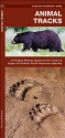 Animal Tracks: A Folding Pocket Guide to the Tracks & Signs of Familiar North American Species (Pocket Naturalist Guide Series)