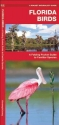 Florida Birds: A Folding Pocket Guide to Familiar Species (Pocket Naturalist Guide Series)