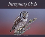Intriguing Owls: Extraordinary Images and Insight