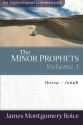 The Minor Prophets: Hosea-Jonah (Expositional Commentary) (Volume 1)