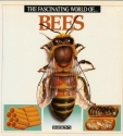 The Fascinating World of Bees