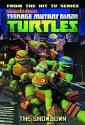 Teenage Mutant Ninja Turtles Animated Volume 3: The Showdown