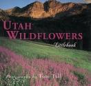 Utah Wildflowers (Utah Littlebooks)