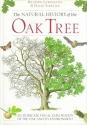 Natural History of the Oak Tree