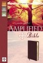 Amplified Bible, Large Print