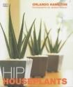 Hip Houseplants