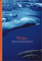 Discoveries: Whales: Giants of the Seas and Oceans (Discoveries (Harry Abrams))