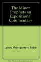 The Minor Prophets: An Expositional Commentary (Hosea-Jonah)