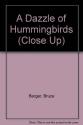 A Dazzle of Hummingbirds (Close Up)