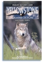 Yellowstone, Grand Teton National Parks: Wildlife Watcher's Guide (Wildlife Watcher's Guide Series)