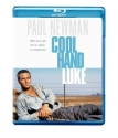Cool Hand Luke [Blu-ray]