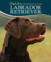 Labrador Retriever (DogLife: Lifelong Care for Your DogTM)